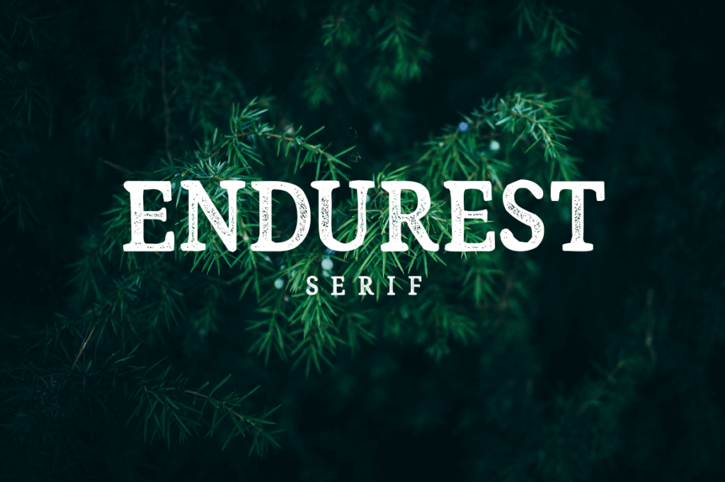 endurest-typeface-cover-1-o