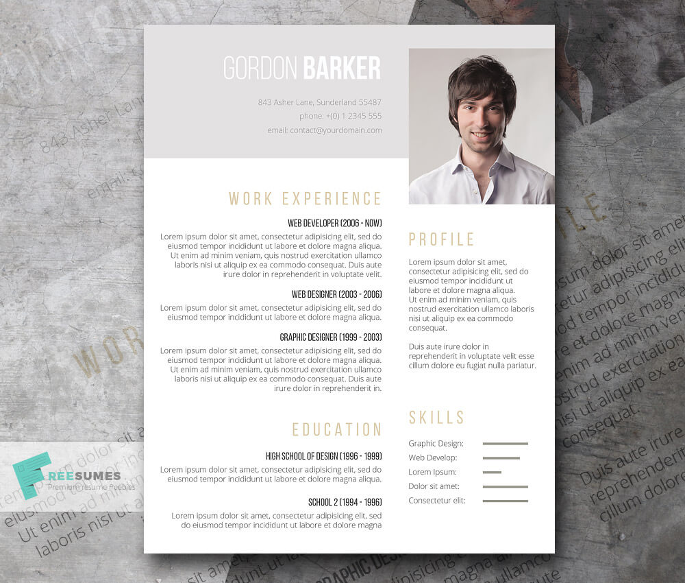 smart portfolio resume template resume template indesign - Resume Templates Indesign