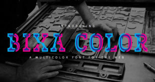 bixa-color.jpg