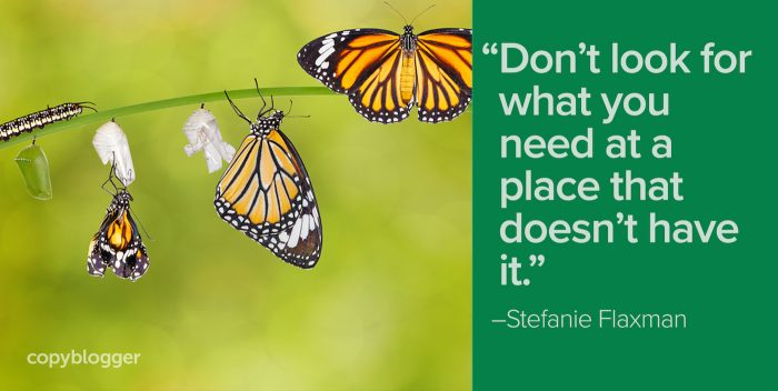 """Don't look for what you need at a place that doesn't have it."" – Stefanie Flaxman"