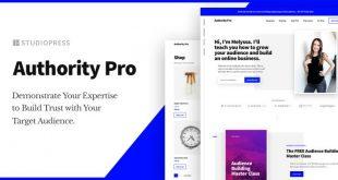 authority-pro-theme-700x353.jpg