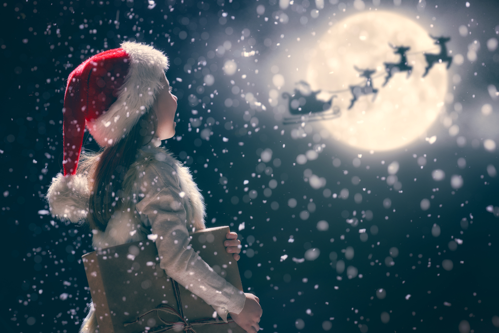 Wishing Everyone a Magical Christmas!