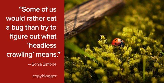 """Some of us would rather eat a bug than try to figure out what 'headless crawling' means."" – Sonia Simone"