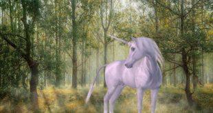 unicorn-800x450.jpg