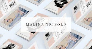 MALINA-Trifold-Brochure-Pattern.jpg