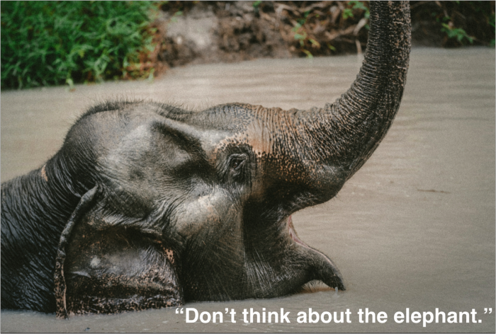 Don't think about the elephant. Seriously, don't think about it.
