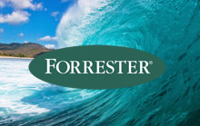 forrester-wave-email-marketing-2018.jpg