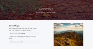 lorem-picsum.jpg