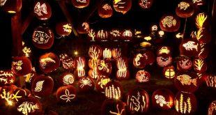 pumpkin-skills.jpg