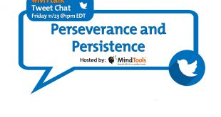 BLOG-Perseverance-and-Persistence-Title.jpg