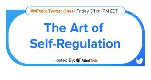 The-Art-of-Self-Regulation-Title-Blog.jpg