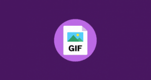how-to-insert-a-gif-into-powerpoint-368x247.png