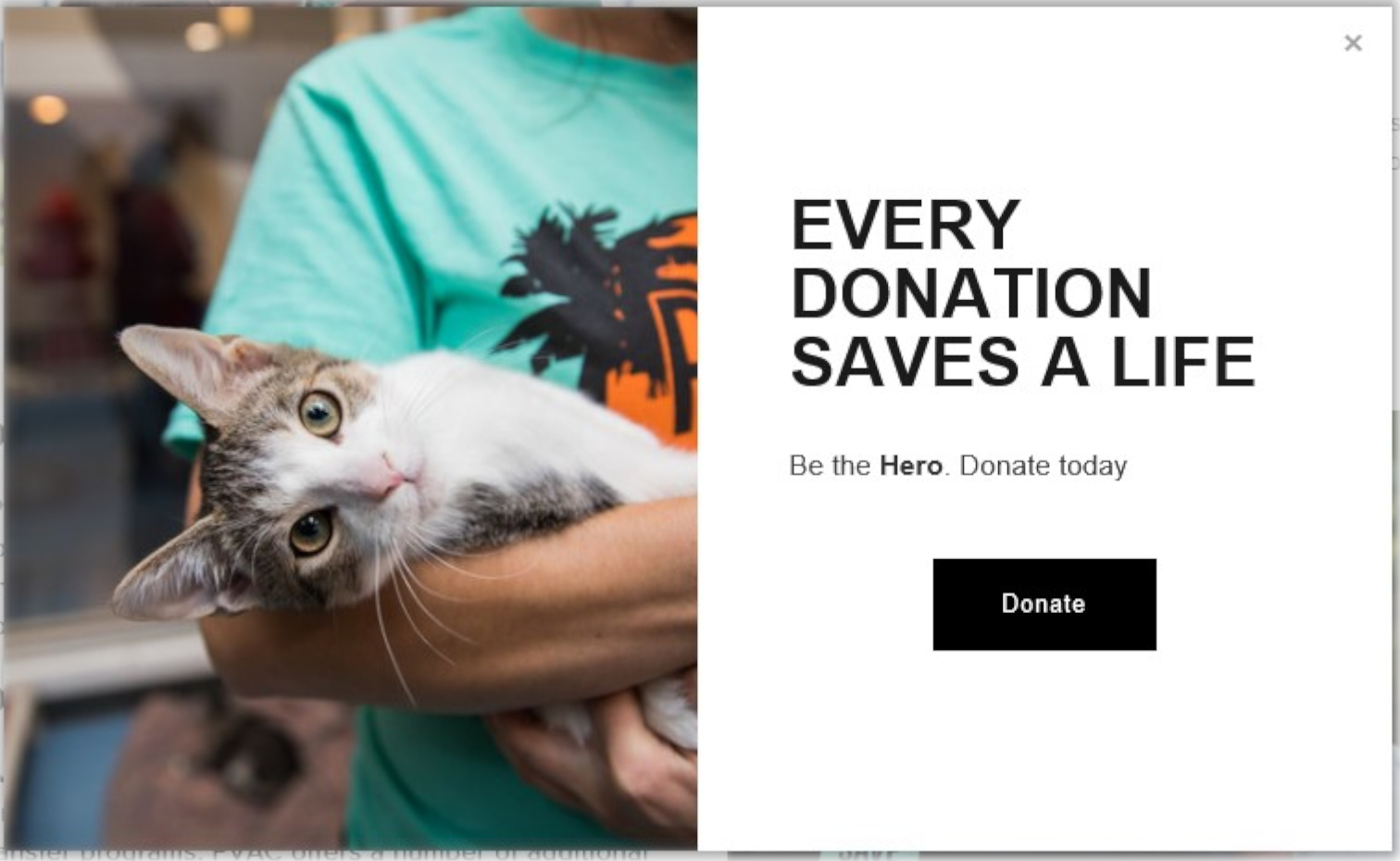 The Palm Valley Animal Center uses an exit intent pop-up to request donations to their organization. They include an image that should appeal to the reader's emotions as well.
