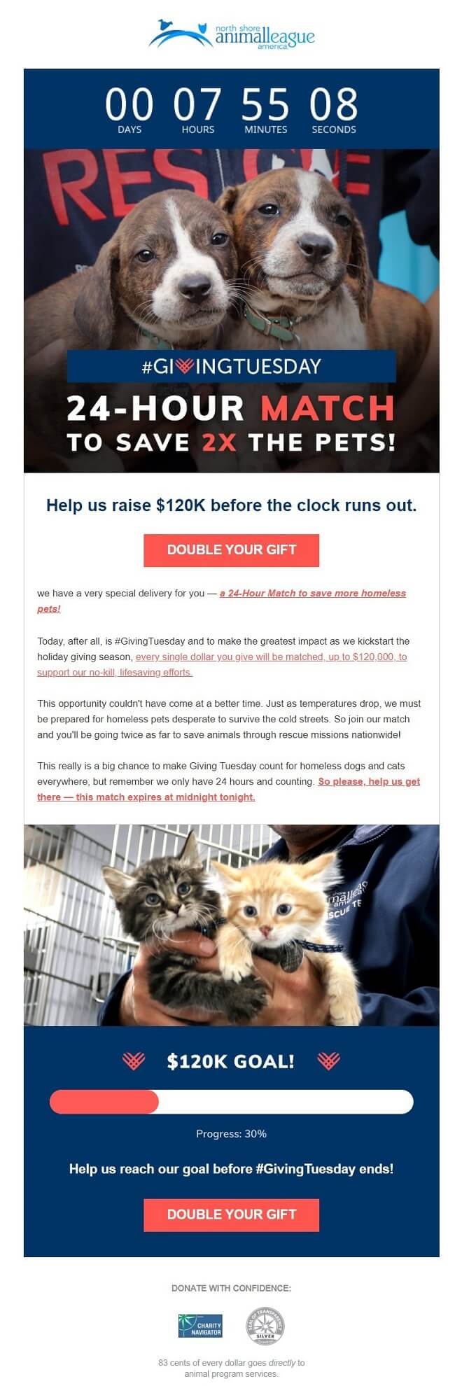 Giving Tuesday same-day reminder email example