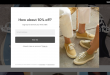popup-form-everlane.png