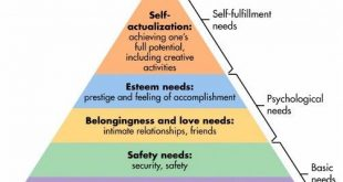 maslow-hierarchy-of-needs.jpeg